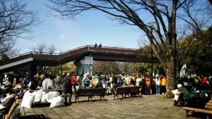 yoyogi-park-4-21