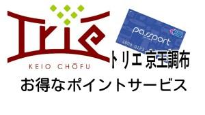 trie-keiochofu-3-1