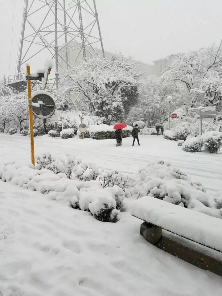 雪降る八王子