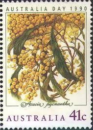 goldenwattle