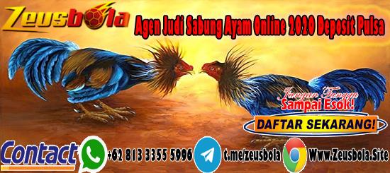 Agen Judi Sabung Ayam Online 2020 Deposit Pulsa