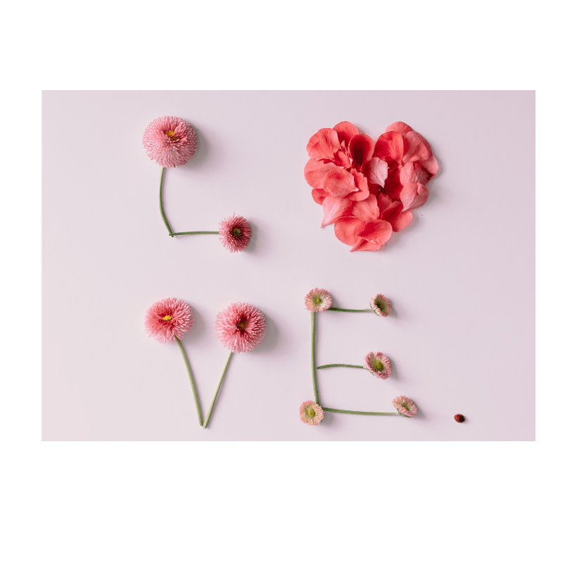 """""""Love"""" made of flowers and petals on a white background."""