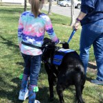 MSH with Karens child and Bagherra 2598 - Service Dogs in Action
