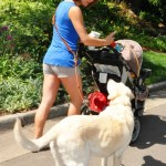 Cookie out for a walk with multi tasking mom 0422 - Happy Customers