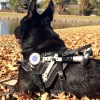 Kepler resting with handle folded 9230 1 - Mobility Support Harness™ for brace and balance stability assistance