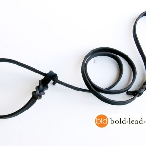 airport lead 326 - The Airport Lead™ -- a metal-free leather leash & collar for travel (no leash snap)