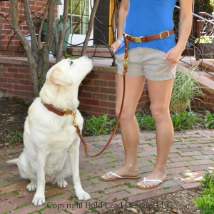 Leather Belt & Leash System - a custom hands-free belt with detachable leash