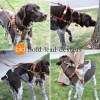 CCH on ENZO series small - Connected Control™ Harness: a Leather no-pull dog walking harness (2-point, front-clip design)