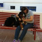 01 journey and dana montero spain - Service Dogs in Action