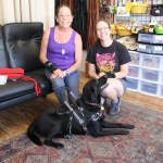 020 - Service Dogs in Action