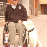 kirk bella 1 - Service Dogs in Action