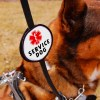 2018 double patch leash badge closeup design 301 - Leash Wrap for Service Dog: double-sided badge