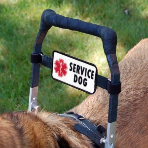 banner badge 101 - Banner Badge for Service Dogs (2-sided handle sign)