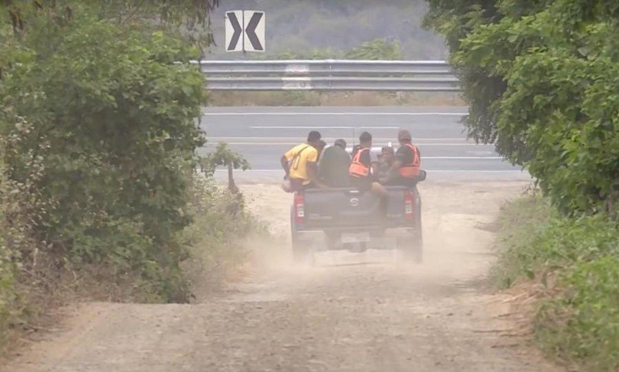 Shqiptarët në Ekuador, të dërguarit e karteleve meksikane/ Si përpunohet gjethja në pastë kok*ine