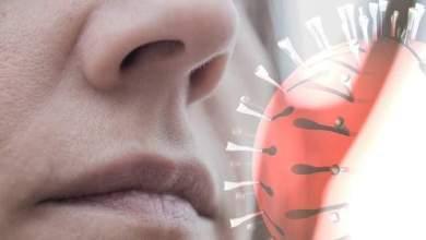 Photo of جدل بين الصحة العالمية وخبراء الفيروسات في سبب إنتقال فيروس كورونا