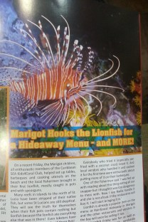 The Lionfish!