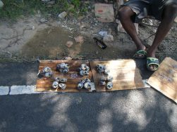 Buying wilks in the fish village of Dennery