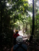 Zip Lining in Dennery (17)