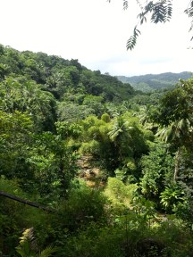 Zip Lining in Dennery (19)