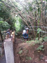 Zip Lining in Dennery (2)