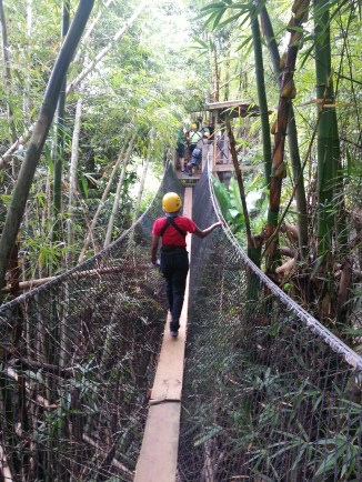 Zip Lining in Dennery (26)