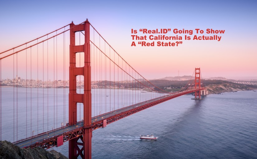 """Will """"Real.ID"""" Be the End of The US Democratic Party?"""