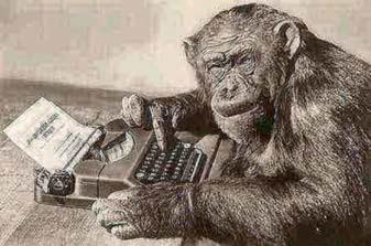 Monkey Time!