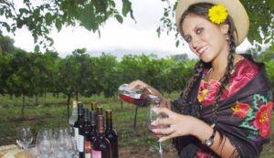 Bolivian Wine
