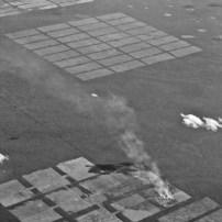 Deforestifcation of Amazonia