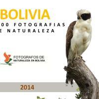 Bolivia's Nature Photographers *** Fotografując boliwijską przyrodę