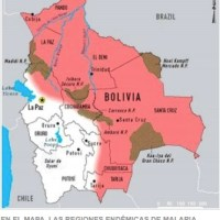 Bolivia Health 101: Four endemic diseases threaten our health!