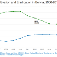Bolivia Coca Cultivation Grows for First Time in 6 Years: UNODC