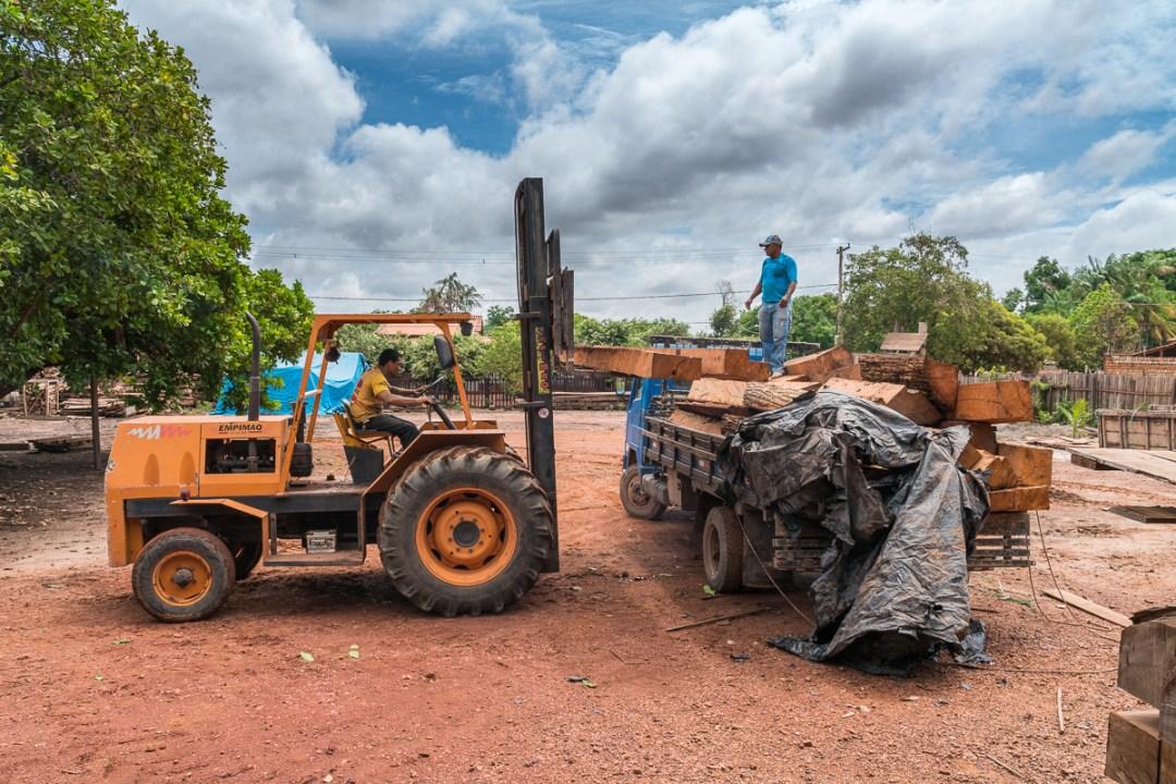 Tømmeplads i Brasilien, hvor en del ulovligt træ fra Boliva bliver forarbejdet. Foto Henrik Egede-Lassen