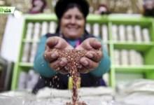 Últimas noticias de Bolivia: Bolivia News – MARTES 07 DE NOVIEMBRE 2017
