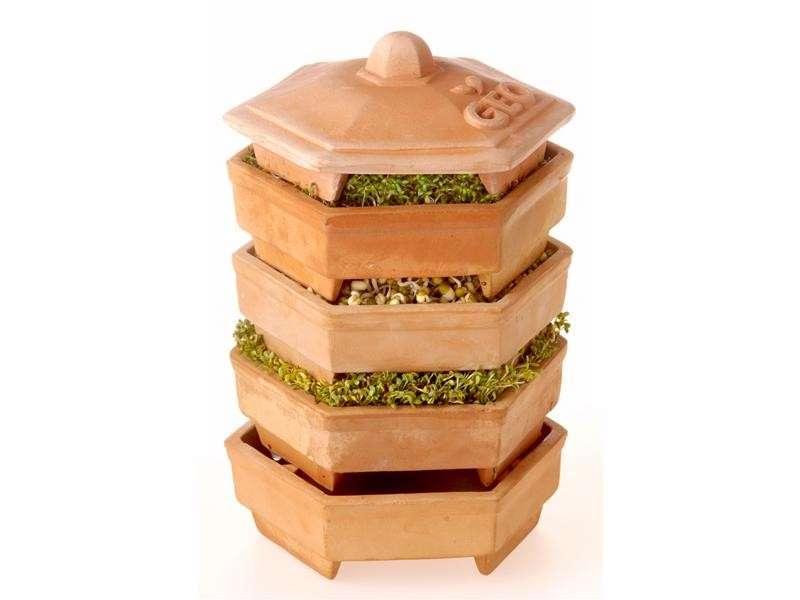 germogliatore a pagoda