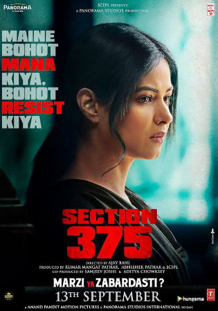 Section 375 (2019) WEB-DL 300Mb Full Hindi Movie Download 480p Watch Online Free bolly4u