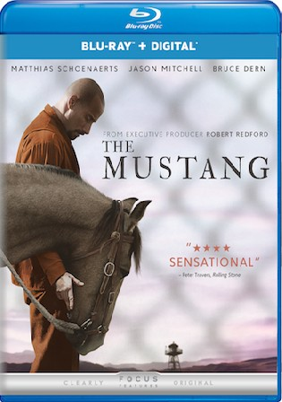 The Mustang 2019 BluRay 800Mb Hindi Dual Audio ORG 720p ESub Watch Online Full Movie Download bolly4u