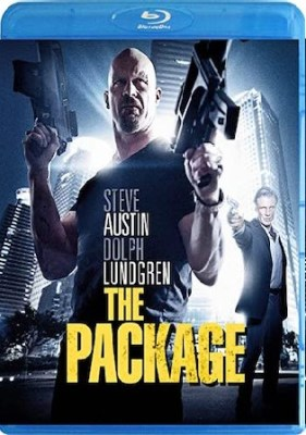 The Package 2013 BluRay 300Mb Hindi Dual Audio 480p Watch Online Full Movie Download bolly4u