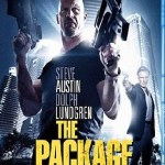 The Package 2013 BluRay 300Mb Hindi Dual Audio 480p