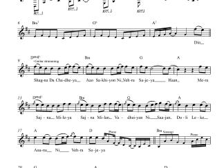 Din Shagna Da flute / violin notes