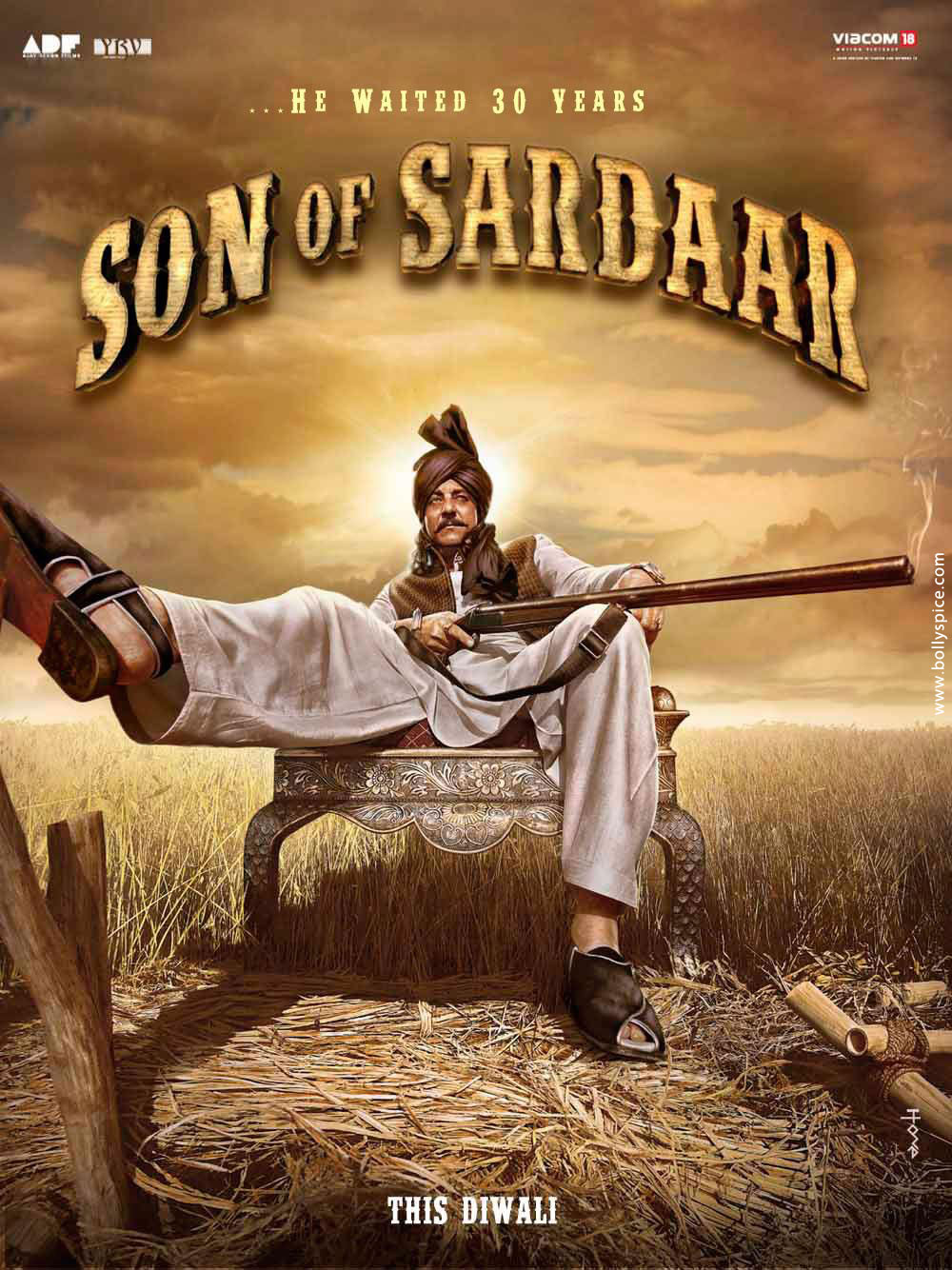 Poster do filme Son of Sardaar