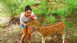 Mishti Chakraborty Deer Lover