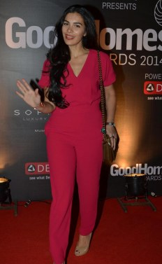 Celebs at the Red Carpet of GoodHomes Awards 2014 at Sofitel,BKC.4