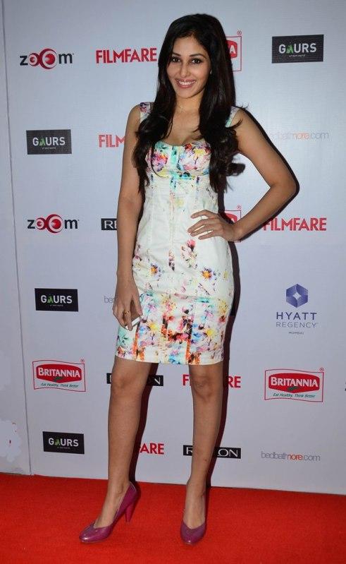 Pooja Chopra at the Red Carpet of '60th Britannia Filmfare Awards 2014' Pr Awards Party at Hyatt Regency.