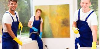 Domestic Cleaning Services cleaning maid empleados de limpieza de casas_edited