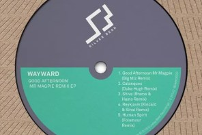 Wayward – Calanques (Duke Hugh Remix) [Silver Bear Recordings]
