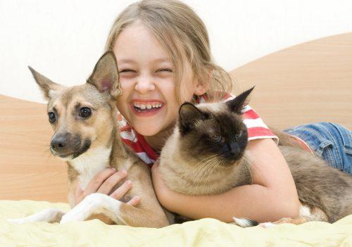 seorang anak perempuan tertawa memeluk anjing dan kucing peliharaannya