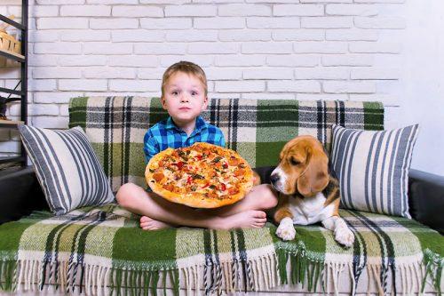 anjing beagle dan anak laki-laki akan memakan pizza berukuran besar