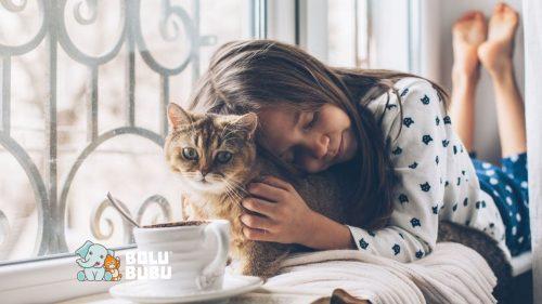 relasi emosional kucing dan manusia