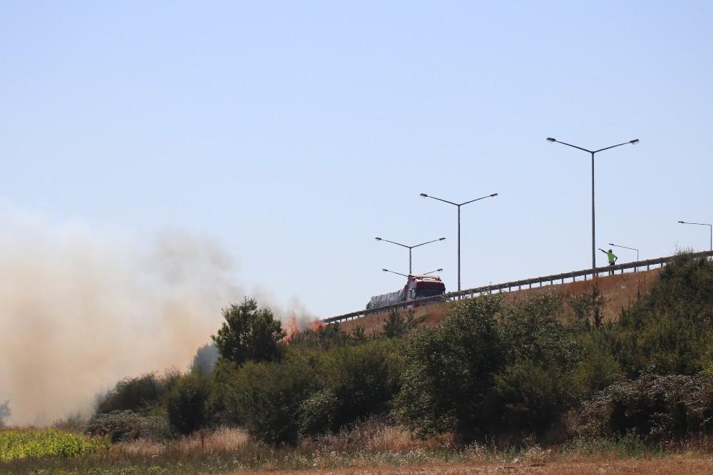 Bolu'da, TEM'in yanındaki 2 dönümlük alan alan alev alev yandı